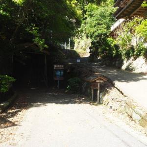 鵜原理想郷~手彫り隧道・海蝕洞・絶景、そして綺麗な海のある正に理想郷~/千葉の風景