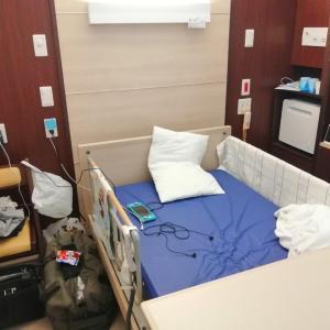 新型コロナウイルスに掛かって分かった事:ホテル療養・入院編