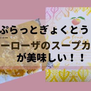 【玉東町】「ぷらっとぎょくとう」のハニーローザのスープカレーが美味しい