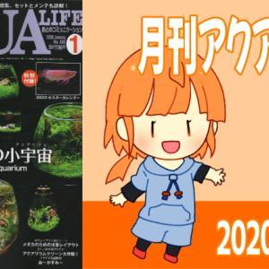 月刊アクアライフ2020年01月号「手のひらの小宇宙(アクアリウム)」のレビュー