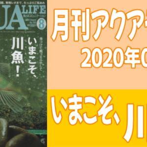 月刊アクアライフ2020年08月号「今こそ、川魚(にったん)! -見つけて、飼って、ふやして-」のレビュー