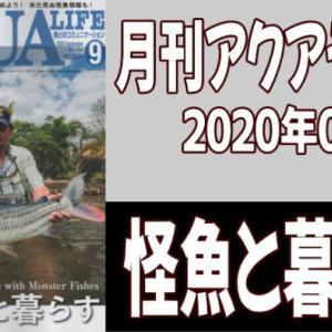 月刊アクアライフ2020年09月号「怪魚と暮らす」のレビュー