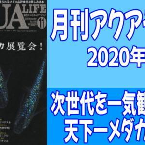 月刊アクアライフ2020年11月号「天下一メダカ展覧会!」のレビュー