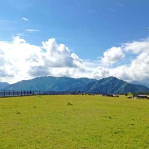 日光の半月山のヒルクライム。「中禅寺湖スカイライン」は日本の名道50選にも選ばれた最高のコース