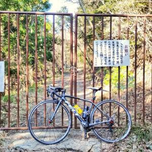 千葉県勝浦市&いすみ市のローカル林道を巡るサイクリングコース 房総半島サイクリング