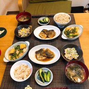 ✳︎鯖の味噌煮とピーマンとじゃがいものきんぴら✳︎