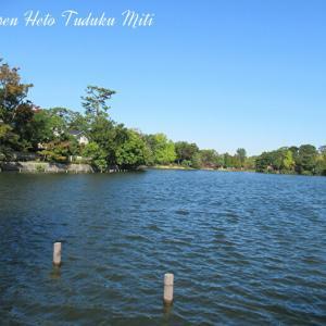 近所に有る池の風景