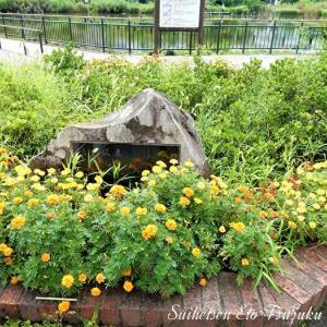 記念碑みたいなのと花と池です