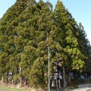 畑山稲荷神社 (鹿角市)