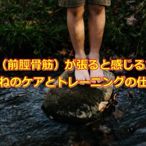 すね(前脛骨筋)が張ると感じる方へ。すねのケアとトレーニングの仕方