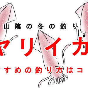 【 エギング】山陰名物ヤリイカ釣り【 ウキ釣り】
