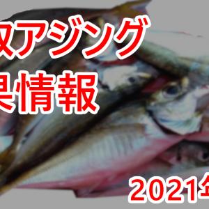 2021年6月24日 鳥取県 中部漁港 アジング釣果