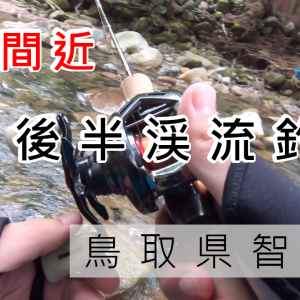 【渓流ルアー】9月後半鳥取県八頭郡智頭町トラウト釣果【禁漁前】