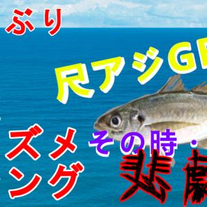 鳥取朝マズメアジング釣果報告!尺アジゲットなるか!?