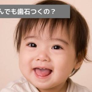 【歯科衛生士に聞いた】赤ちゃん歯石とれる?原因、とり方を解説!