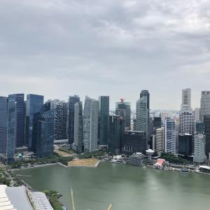 シンガポール 0泊2日 弾丸出張してきました! 【雑感編】