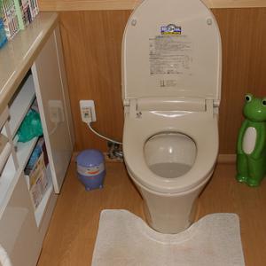 【再】トイレの水を流したら大量のカブトムシの幼虫みたいのが流れてきてwww【虫注意】