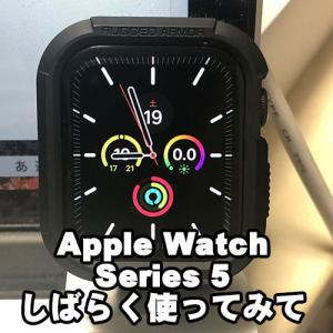 Apple Watch Series5 を購入してから3週間経過したので使用感などのまとめ