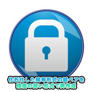 古すぎる DSA 形式の暗号鍵で SSH 接続できなくなったので Ed25519 形式で鍵ペアを作成しました