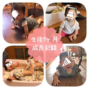 【成長記録】生後7ヶ月の赤ちゃんのこの1ヶ月の変化。ズリバイをマスターしました。