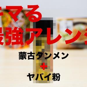 蒙古タンメン 納豆+〇〇〇〇 アレンジ ネット初公開のヤバイ粉!