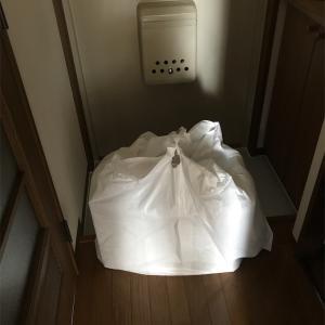 玄関のクローゼットを無印良品のケースで整理したよ