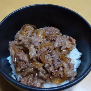 冷蔵庫の残り物  こま切れ肉で牛丼、豚丼