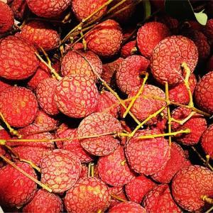 ライチ、マンゴーとっても美味しい夏のフルーツは食べ過ぎに気をつけて!ライチ病って!?