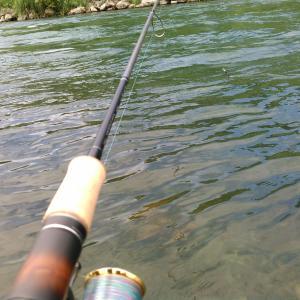 【トラウト2019】恐らく釣り納め?となる本流釣行