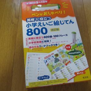 【小学生の英語学習】「小学えいご絵じてん800」タッチペンが面白い!子供1人ですいすい勉強しています