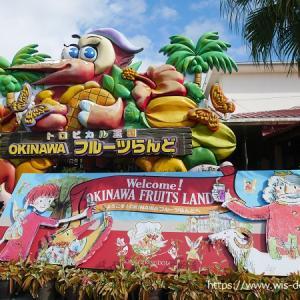 【沖縄】パイナップルパークとフルーツランド、どっち行く?小学生にはフルーツランドがおすすめでした