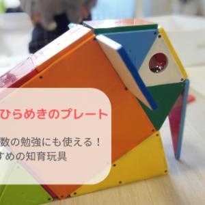 【レビュー】ピタゴラスひらめきプレートは、遊びにも算数の勉強にも使える!子供と遊んだ感想