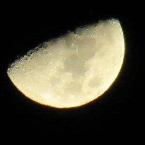 10月 月齢7.76おやすみ~
