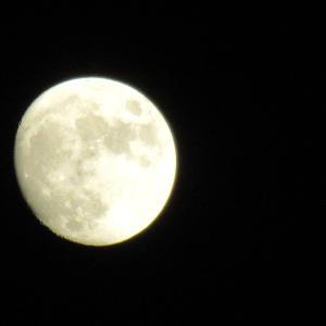 後の月 十三夜