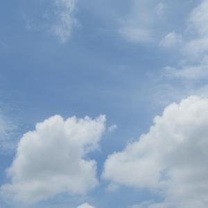 青い空と雨柱 天使も龍も