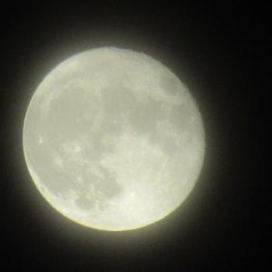 9月 月齢 十六夜