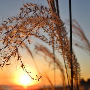 遠州灘のだるま夕陽 201126