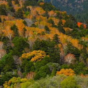 4k 絶景 癒し自然映像 「秋 紅葉の上高地 梓川と穂高連峰」10月下旬 信州松本 Japan Alps Kamikochi Nature Relaxation