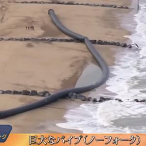 海岸に打ち上げられたナゾの物体4選