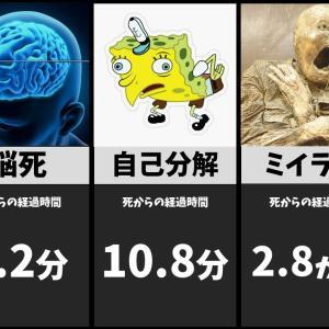 死後、人の身体に起こる変化が・・・複雑。
