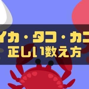 イカ・タコ・カニの数え方!単位の意味や由来、英語での数え方等を解説!