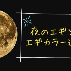 【エギング】夜に釣れるエギカラーはこれ!濁り・澄み潮・満月など状況別で解説!