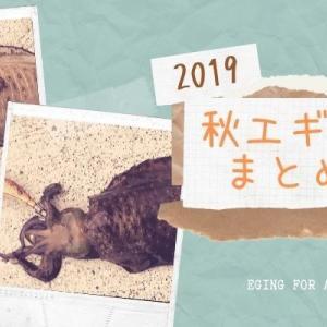 【熊本天草】2019秋エギング釣果まとめ!
