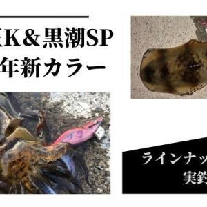 【2020年】エギ王K&黒潮SPに新色が追加!実釣インプレとラインナップの紹介!