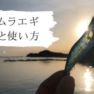 【エギング】ケイムラエギとは?夜光との違いや効果を詳しく解説!