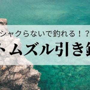 【エギング】ボトムズル引きのやり方!シャクらずアオリイカを釣る方法とは?