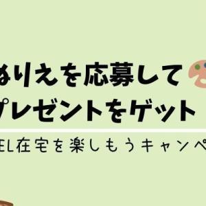 【DUELキャンペーン】エギやルアーのぬりえコンテストでプレゼントをゲット![2020年5月10日まで]