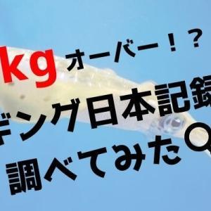 日本記録!?エギング最大級のモンスターアオリイカは規格外サイズ!(画像あり)