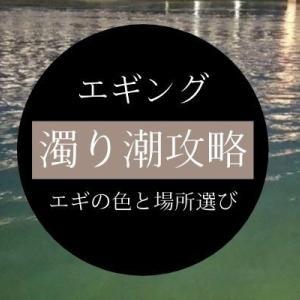 【エギング】濁りがあると釣れない?エギカラーとポイント選びが出来れば簡単に釣れる!