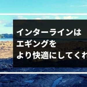 【エギング】おすすめインターラインロッド5選!簡単なメンテナンス方法も紹介!